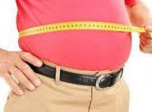 4486990_2032_obesita